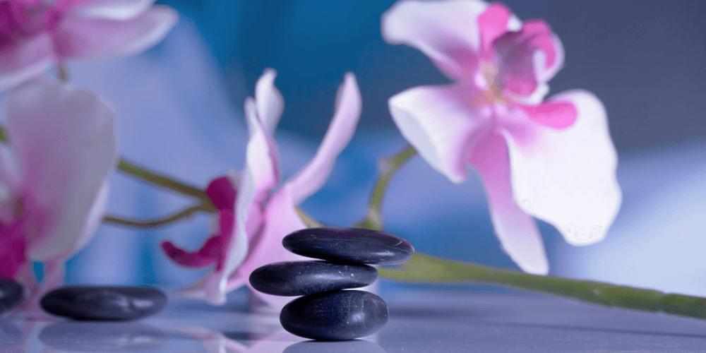 Fisioterapia: ¿Qué es? Y cómo puede ayudar a tu salud. ¡Entérate!
