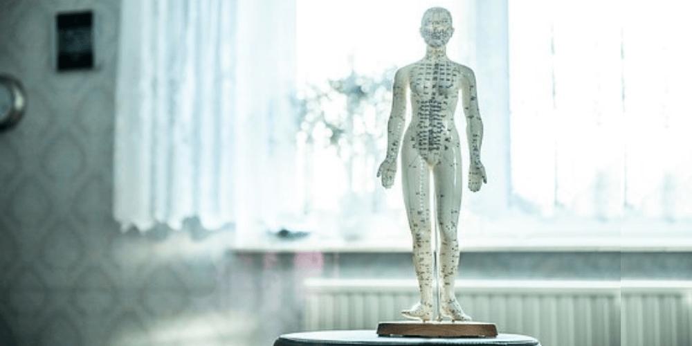 Osteopatía: una solución efectiva para conocer alteraciones y desequilibrios en tu salud